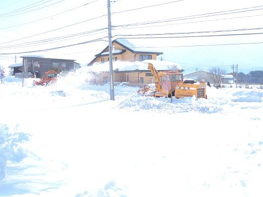 大雪の中の感動(@_@。_a0211886_1251761.jpg
