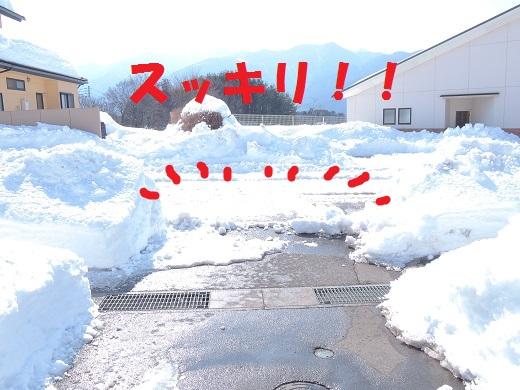 大雪の中の感動(@_@。_a0211886_1273174.jpg
