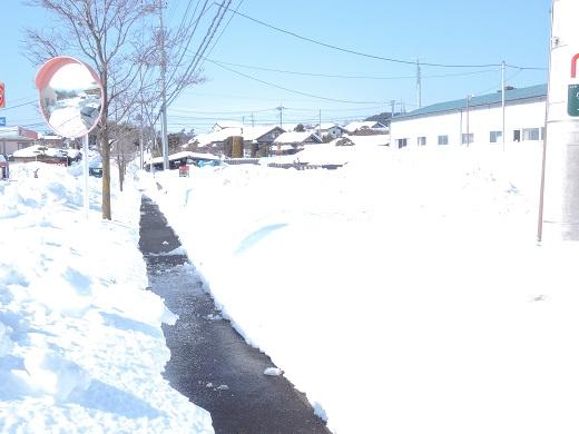 大雪の中の感動(@_@。_a0211886_131378.jpg