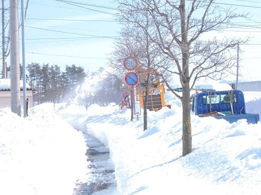 大雪の中の感動(@_@。_a0211886_1331752.jpg