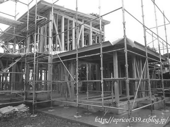 【家づくり】 上棟式1ヶ月後 屋根・窓の取り付け_c0293787_1638890.png
