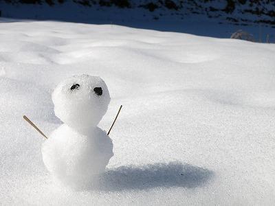 初 雪だるま_c0239901_10362350.jpg
