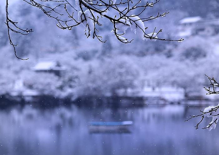 """""""雪の常国寺"""" そのⅢ_a0140608_814590.jpg"""