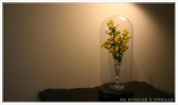 globe en verre アンティークのガラスドーム_d0184921_14543710.jpg