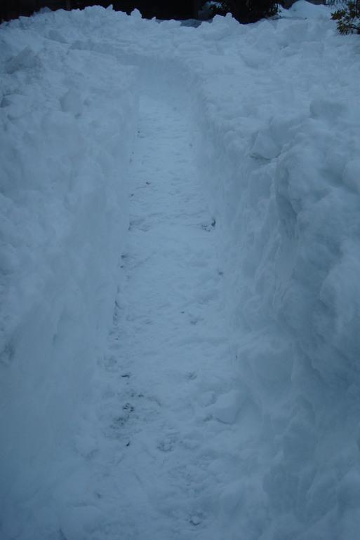 連日の雪かき_e0226943_2320899.jpg