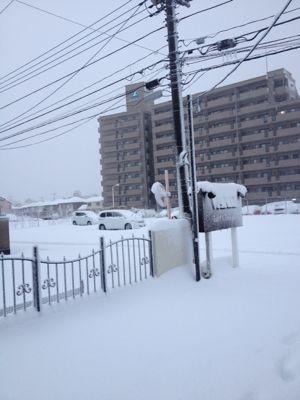記録的豪雪・雪かき_b0194266_11474136.jpg