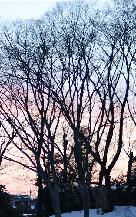 冬のなかの詩人_b0194880_1235771.jpg
