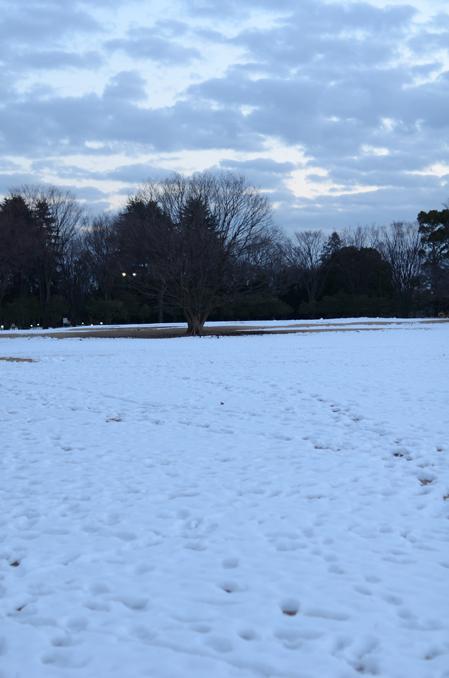 冬のなかの詩人_b0194880_19515.jpg