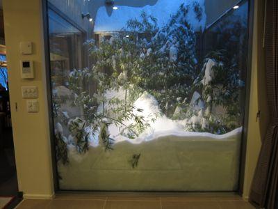 観測史上最高の積雪量となった雪の日_d0133485_15583679.jpg