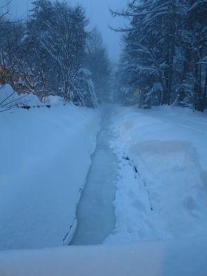 観測史上最高の積雪量となった雪の日_d0133485_1559444.jpg