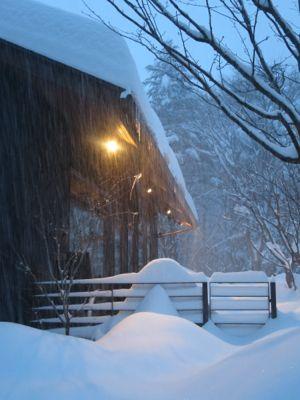 観測史上最高の積雪量となった雪の日_d0133485_1623333.jpg