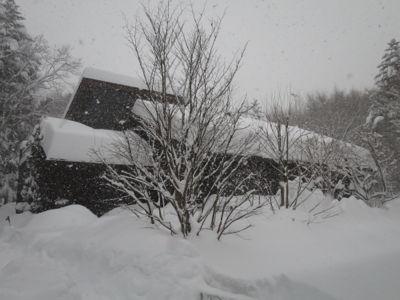 観測史上最高の積雪量となった雪の日 (part2)_d0133485_16243261.jpg