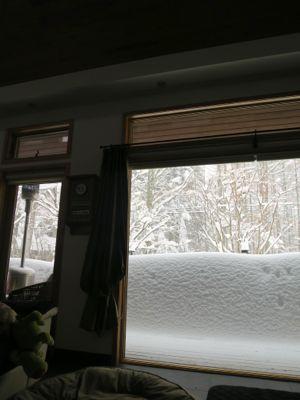 観測史上最高の積雪量となった雪の日 (part2)_d0133485_16271817.jpg