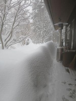 観測史上最高の積雪量となった雪の日 (part2)_d0133485_16275178.jpg