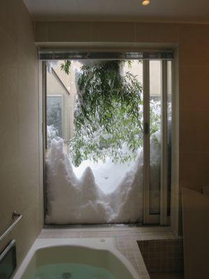 観測史上最高の積雪量となった雪の日 (part2)_d0133485_16282711.jpg