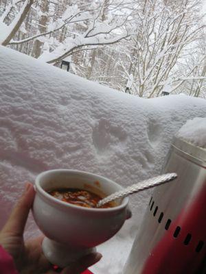 観測史上最高の積雪量となった雪の日 (part3)_d0133485_16394299.jpg