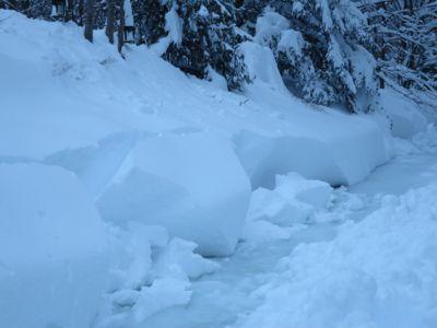 観測史上最高の積雪量となった雪の日 (part3)_d0133485_1741764.jpg