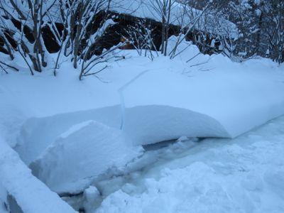 観測史上最高の積雪量となった雪の日 (part3)_d0133485_174282.jpg