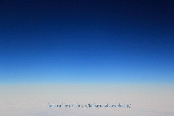 SkyBlue_f0299486_2010165.jpg