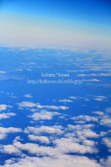 SkyBlue_f0299486_20105677.jpg