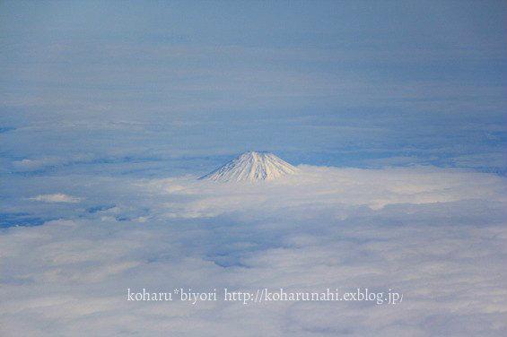 SkyBlue_f0299486_20113391.jpg