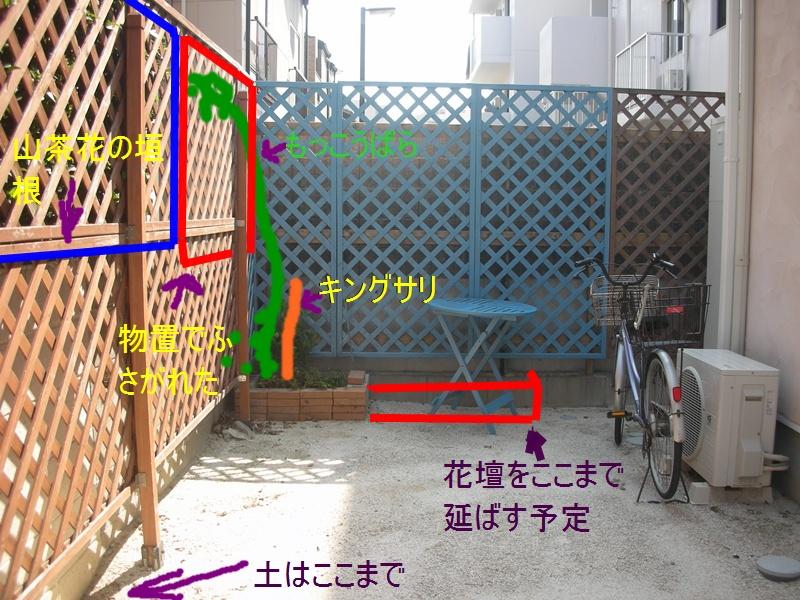 f0035506_20113067.jpg