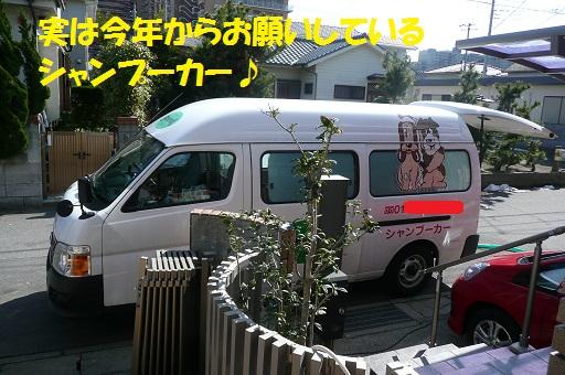 f0121712_1574289.jpg