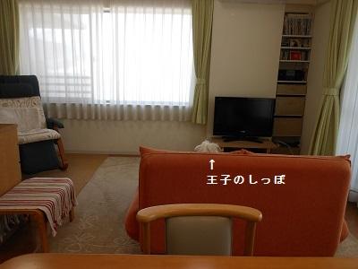 c0261346_21211174.jpg