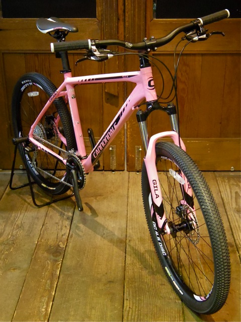 cannondale TRAIL 6 (SALE BIKE) _e0132852_221109.jpg