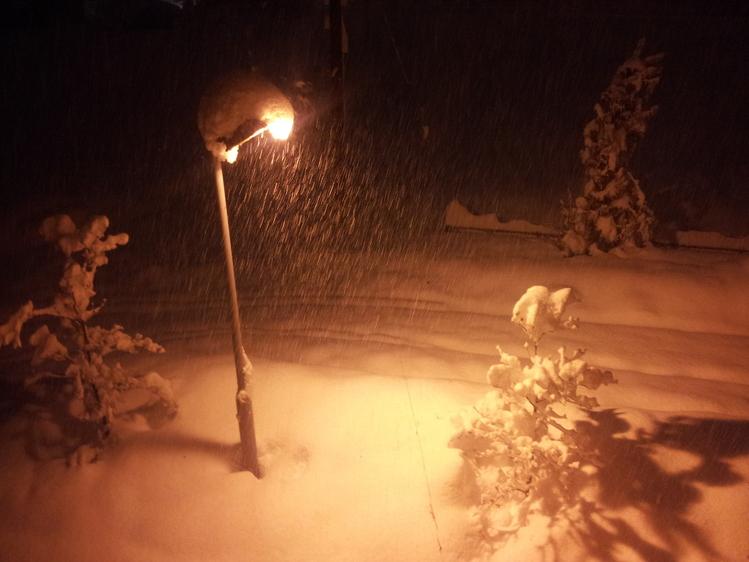 記録的な大雪_e0191174_22161150.jpg