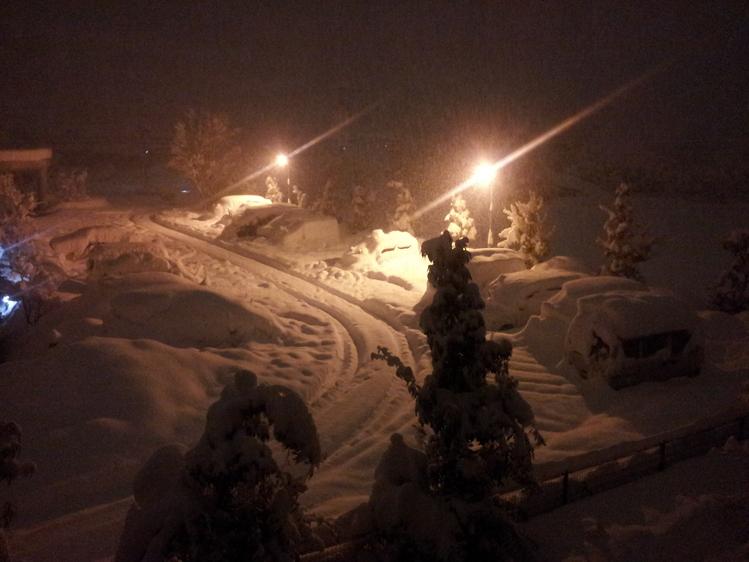 記録的な大雪_e0191174_2217451.jpg