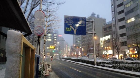 40年ぶりの大雪!_a0268377_1847171.jpg