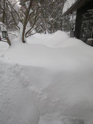 観測史上最高の積雪量となった雪の日 3日目_d0133485_14123497.jpg