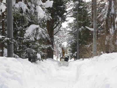観測史上最高の積雪量となった雪の日 3日目_d0133485_15332353.jpg