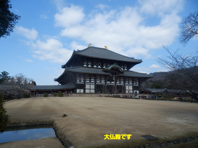 奈良に行くのは 何年ぶりでしょうか・・・_c0098501_23251477.jpg