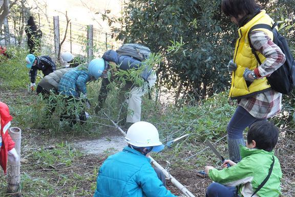 廃棄される竹を動物園へ・・・ _e0272869_21442833.jpg