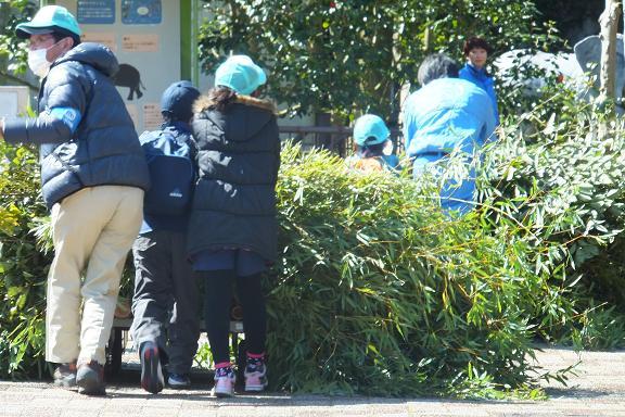 廃棄される竹を動物園へ・・・ _e0272869_21444844.jpg