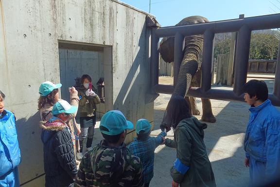 廃棄される竹を動物園へ・・・ _e0272869_22310176.jpg