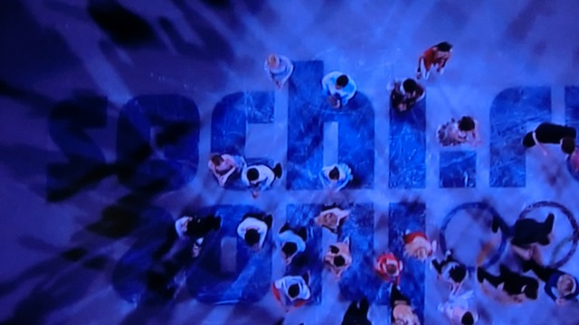 ソチの空に輝く日本のアスリート達、ソチ冬季オリンピック閉会、ソチ五輪で山村愛子選手が教えてくれたもの_d0181492_22355212.jpg