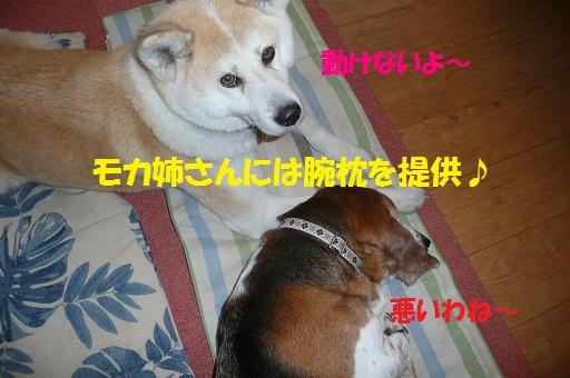 f0121712_14184385.jpg