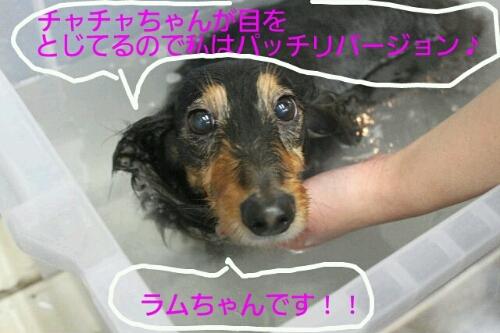 b0130018_0225150.jpg
