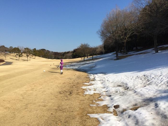 雪の上・・・関東編_b0150120_12453553.jpg