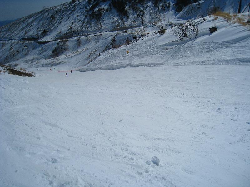 2/24今日のスキー場Scene_a0057828_1619538.jpg
