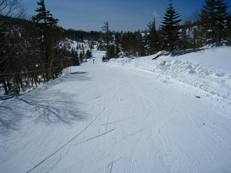 2/24今日のスキー場Scene_a0057828_1653717.jpg