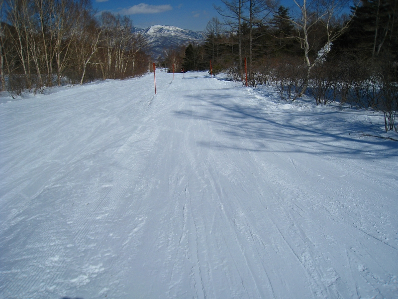 2/24今日のスキー場Scene_a0057828_16542084.jpg
