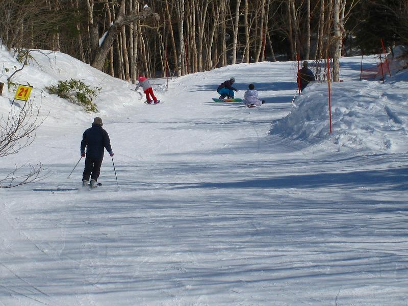 2/24今日のスキー場Scene_a0057828_1655152.jpg