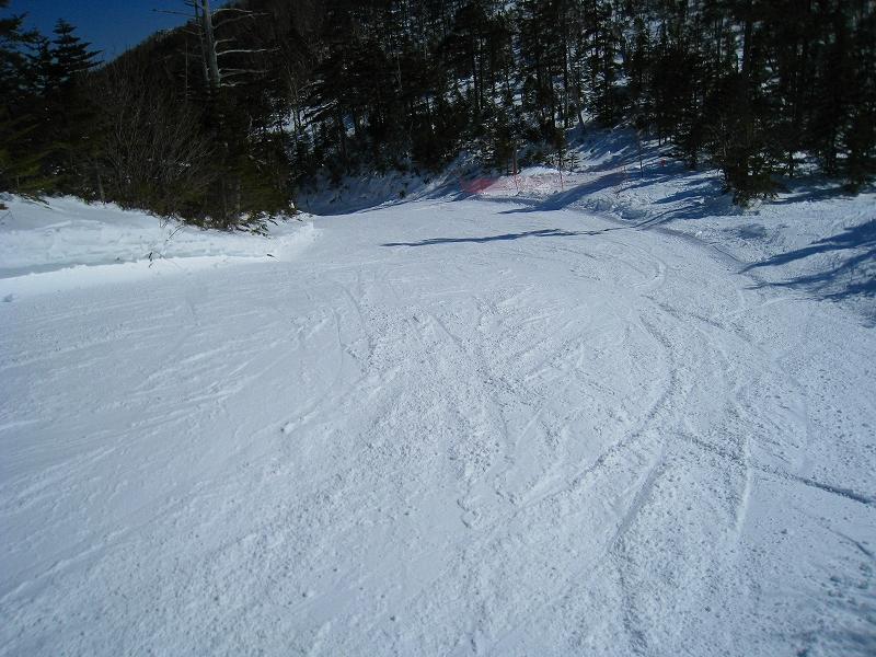 2/24今日のスキー場Scene_a0057828_1661450.jpg