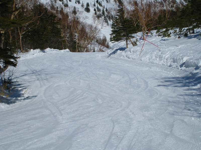 2/24今日のスキー場Scene_a0057828_1663957.jpg