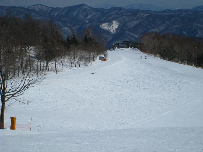 2/24今日のスキー場Scene_a0057828_1713341.jpg