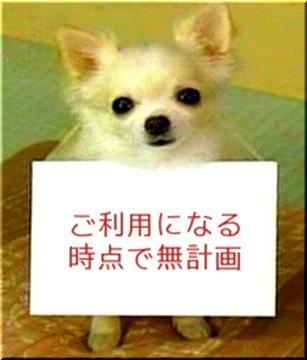 f0056935_18522933.jpg